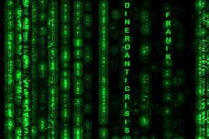 Franik en Matrix